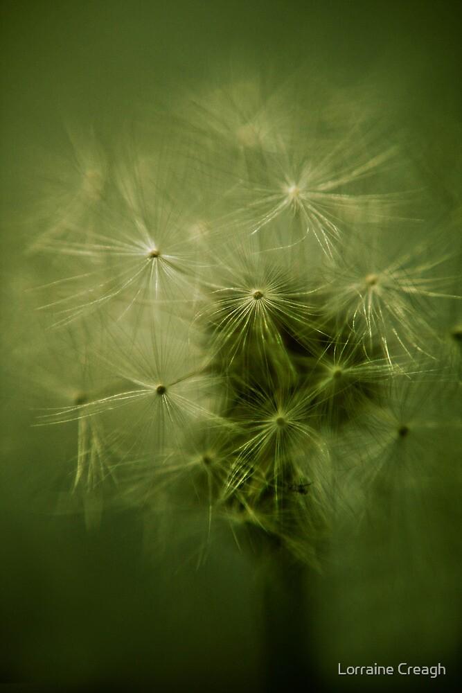 ~ whisper ~ by Lorraine Creagh