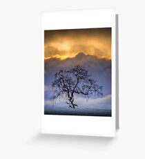 Snowstorm clouds... Greeting Card