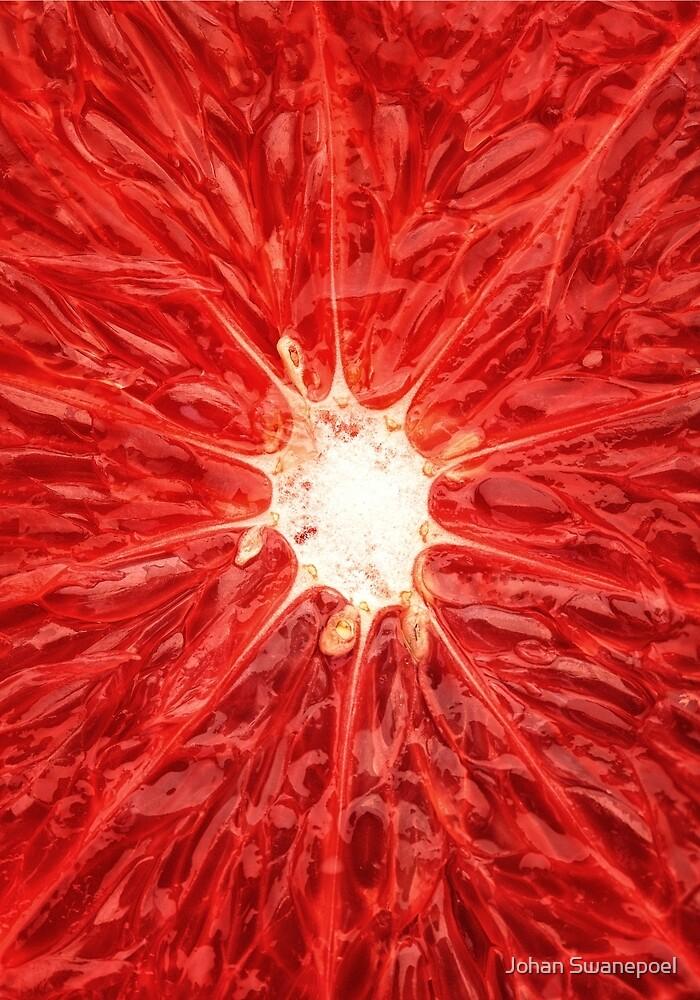 Grapefruit close-up by Johan Swanepoel