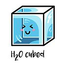 H2O Cubed Ice Block Chemistry Science Joke by Fiona Reeves