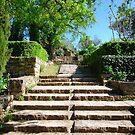 Bruniquel stairs    by 29Breizh33
