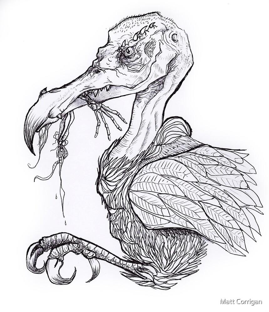 Vulture by Matt Corrigan