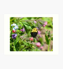 Hovering Around the Rockery Art Print