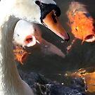 Evil Swan by aquarius84