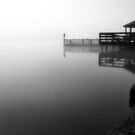 Foggy Night at Lilydale Lake #2 by Jason Green