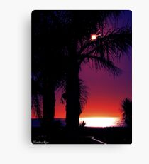 In the Shadows Canvas Print