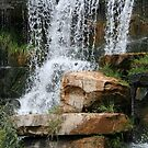 Waterfall at Spring Park Tuscumbia, Alabama by DebbieCHayes