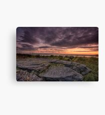 Frogs gob sunset Canvas Print
