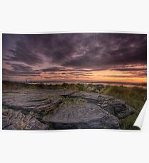 Frogs gob sunset Poster