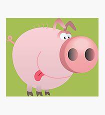 Funny joking pig  Photographic Print