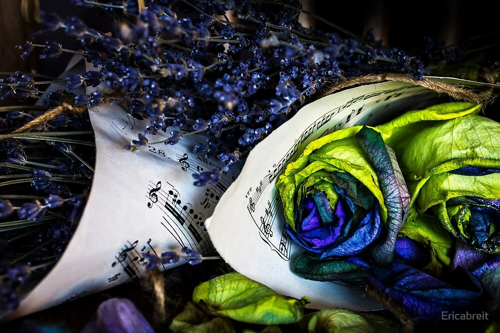 Music & Roses by Ericabreit