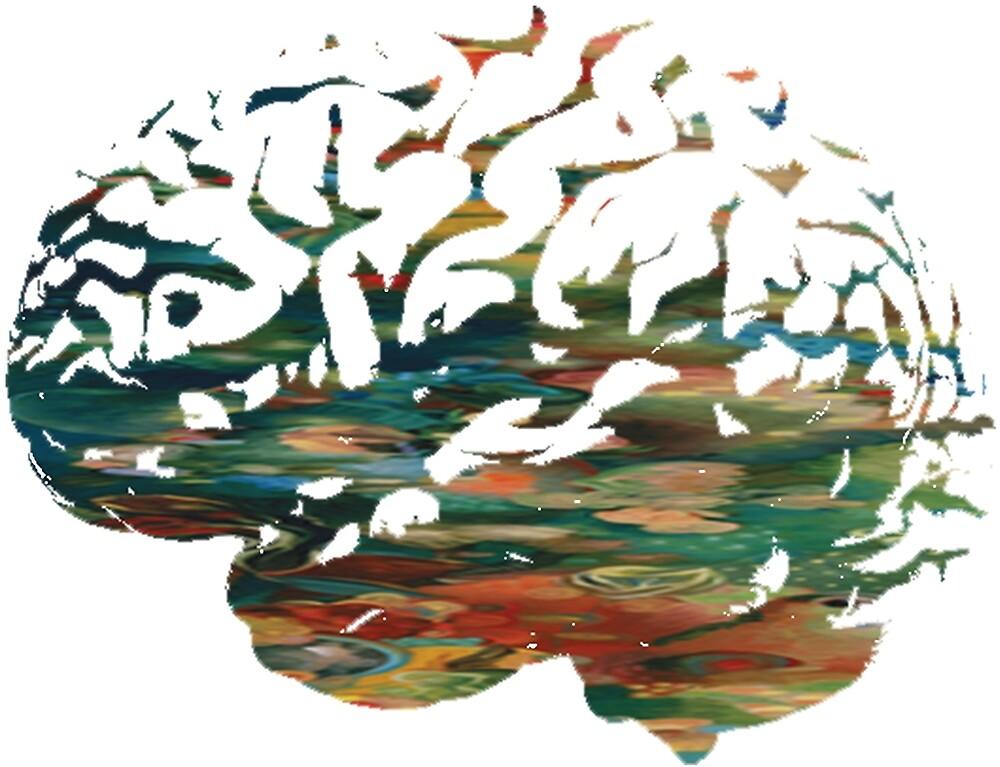 Anatomy - Brain by ProjectMayhem