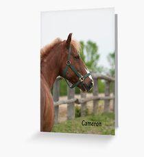 Cameron  - NNEP Ottawa, ON (1) Greeting Card