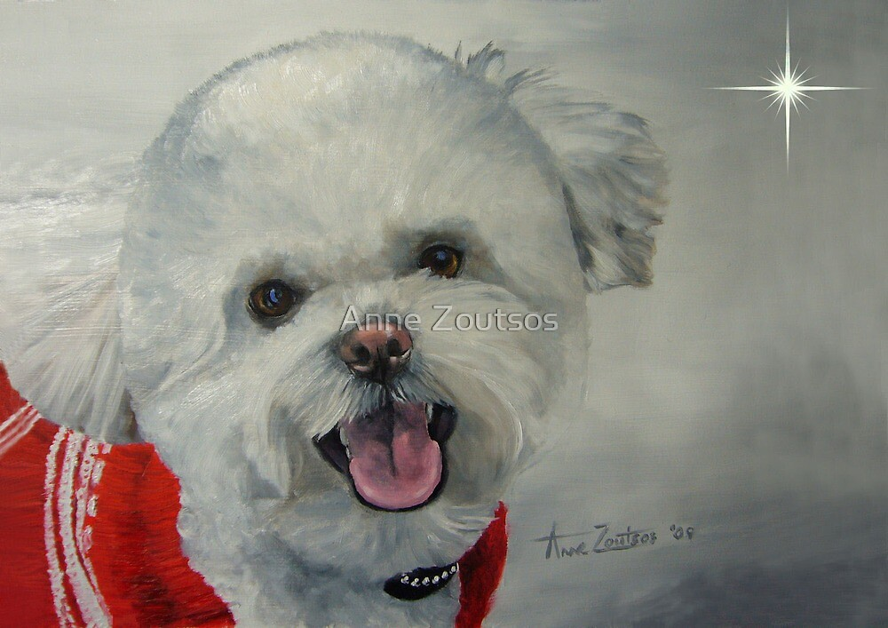 Little White Dog (Christmas Card) by Anne Zoutsos