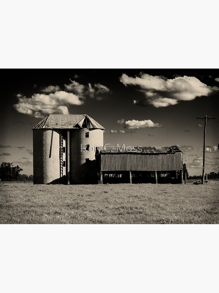 Silos at Shoalhaven 2 by ronmoss
