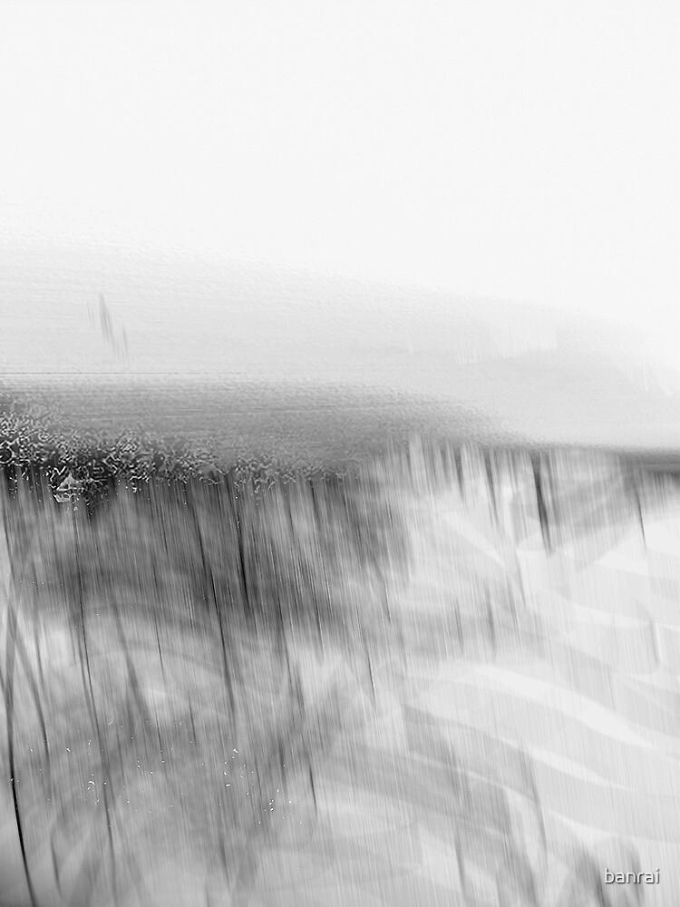 shrouded vineyard.... foggy morning by banrai