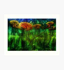 Underwater Lilies Art Print