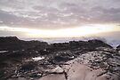 Currumbin Beach by Sonja Wells