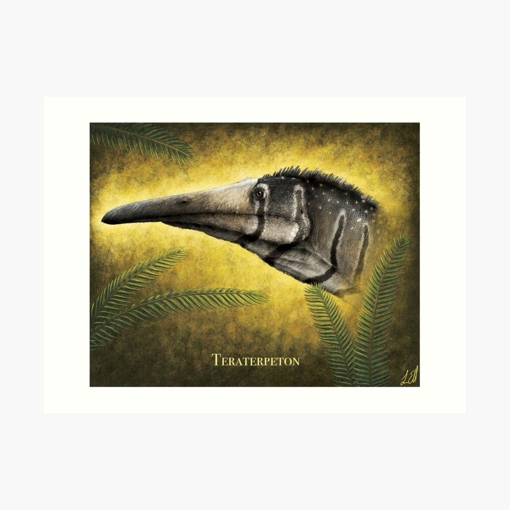 Teraterpeton-Porträt Kunstdruck