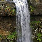 Paddy's Falls by bazcelt