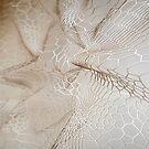 «suave colmena de textura blanca» de designersara