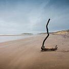 Rhoshilli Beach  by David Meacham
