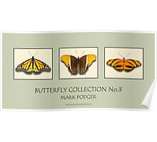 Butterfly Horizontal Collection 3 - Print Poster