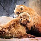 Bear Hug by Darlene Lankford