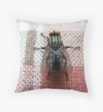 Fat juicy fly. Throw Pillow