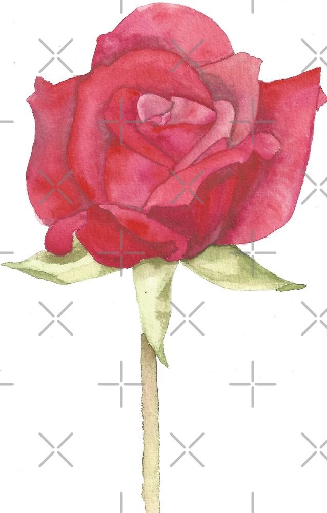 Rote Rose, basierend auf ursprünglichem Aquarell von SharonRoseR