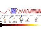 Electromagnetic Spectrum - Physics, Electromagnetism by znamenski