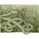The Green Tree Snake by SnakeArtist