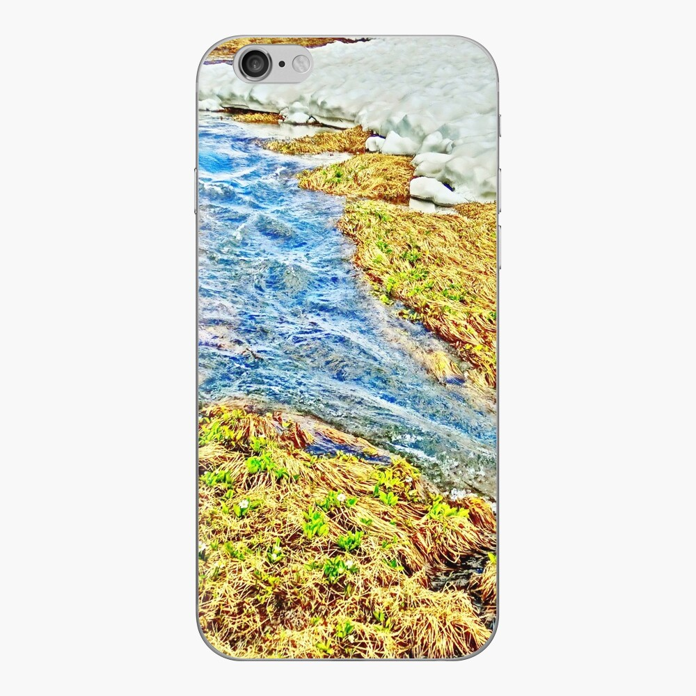 Roaring Fork River, Headwaters No.8 iPhone Skin