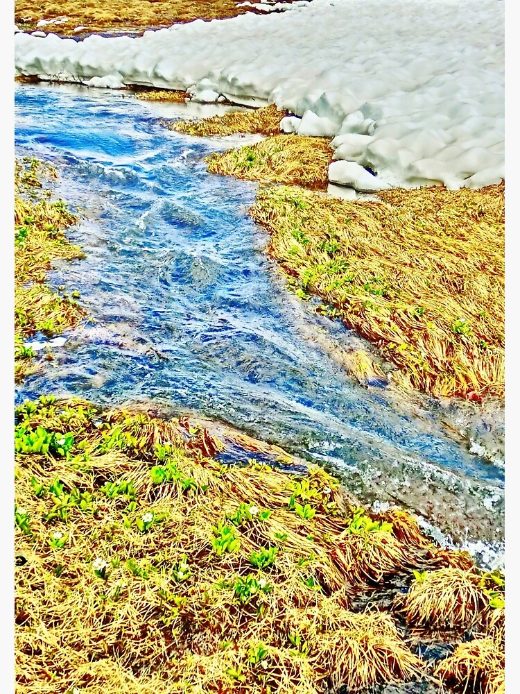 Roaring Fork River, Headwaters No.8 by 32DARTS