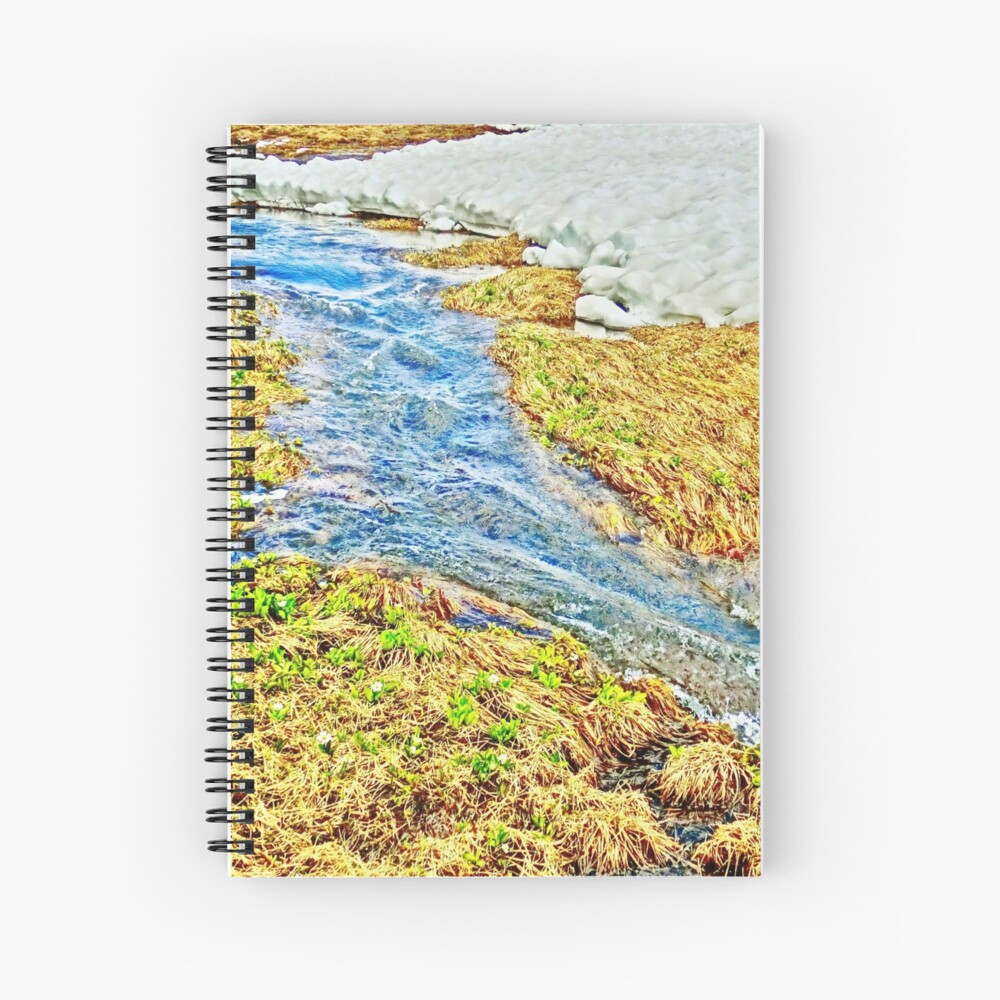 Roaring Fork River, Headwaters No.8 Spiral Notebook
