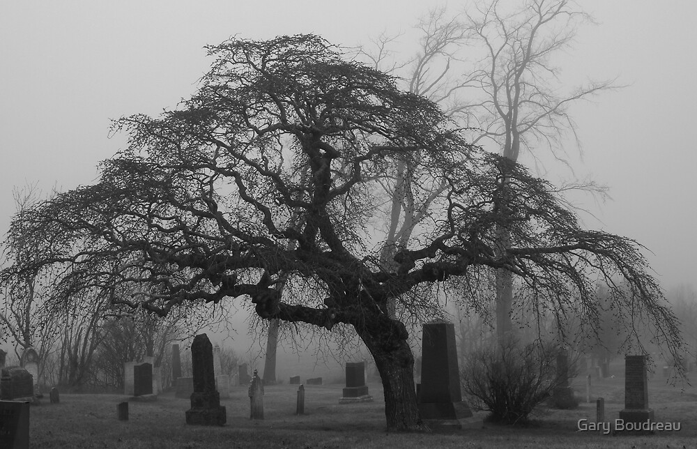 Foggy Resting Place by Gary Boudreau