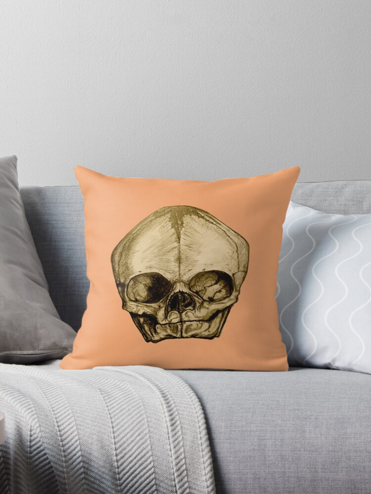 Anatomical Infant Skull by BloodandBone