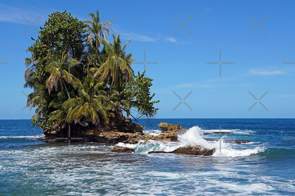 Tropical islet with lush vegetation by Dam - www.seaphotoart.com