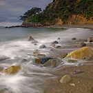 Goat Bay Coromandel by Paul Mercer