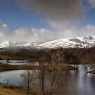 Tarn Hows In March by Jamie  Green