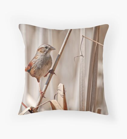 Swamp Sparrow - Ottawa, Ontario Throw Pillow