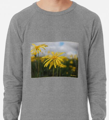 SPRING PLEASURE - Al die veld is vrolik.... Lightweight Sweatshirt