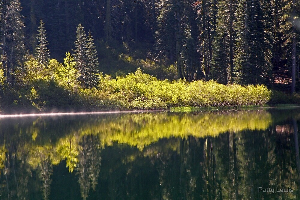 Lower Lindsay Lake Reflections  by Patty Lewis