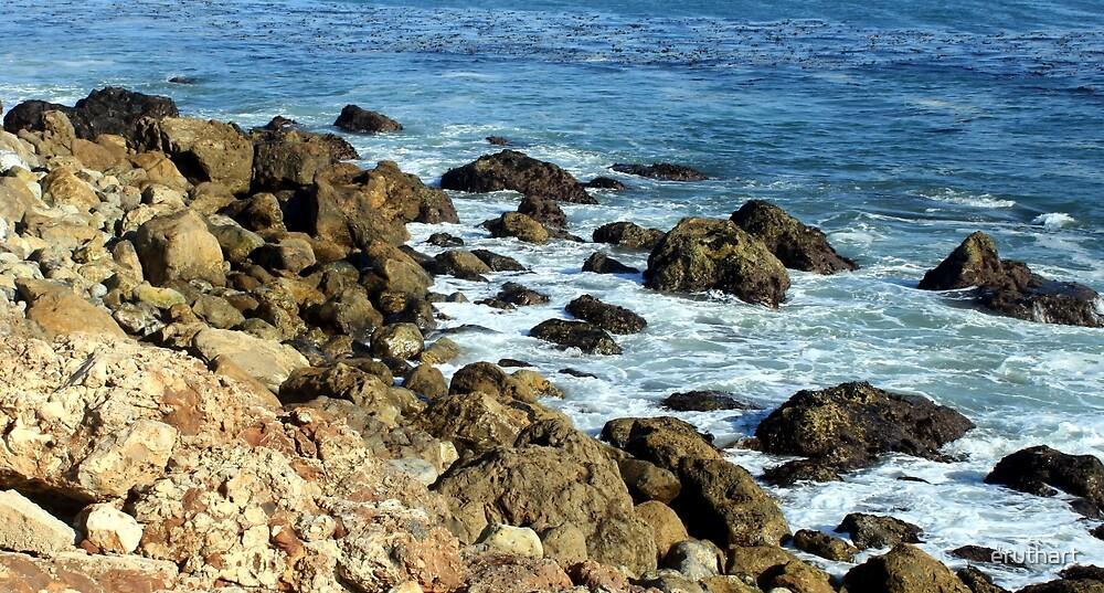 California Coastline 0470 by eruthart