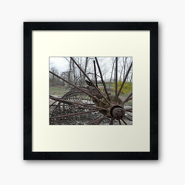 Rusty...with a touch of yellow Framed Art Print