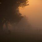Nambung sunrise 2 by Peter Rattigan