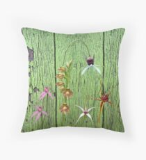 Cerise Spider Orchid on Green Painted Wall, native orchids of Western Australia. Throw Pillow