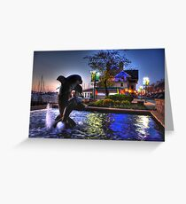 Dolphins in Baltimore Greeting Card