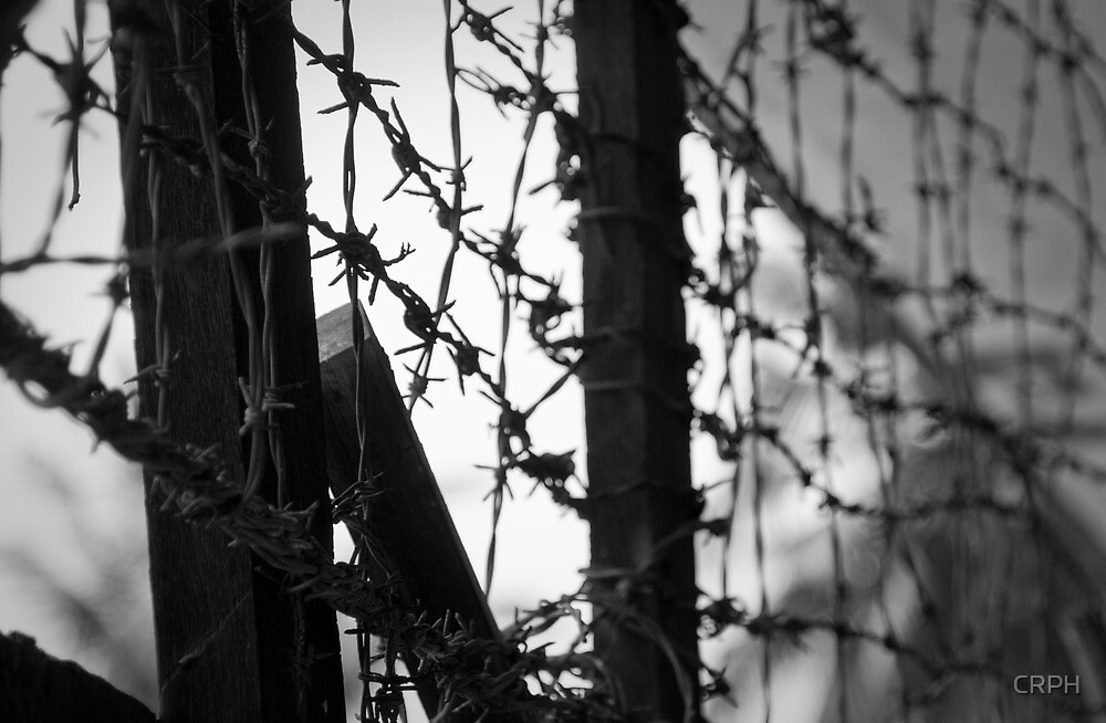S21 prison barbed wire by CRPH
