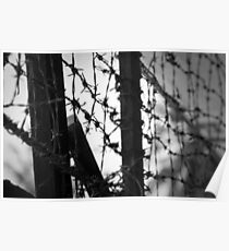 S21 prison barbed wire Poster